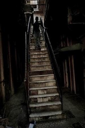 Старая лестница. Новые постояльцы. Часть 1.