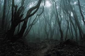 Трое и одна в лесу куни жене