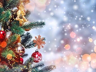 Старый Новый год (Васильев день)