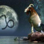 Совместимость Козерога с другими знаками зодиака