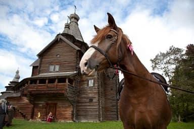 Фрол и Лавёр - лошадники