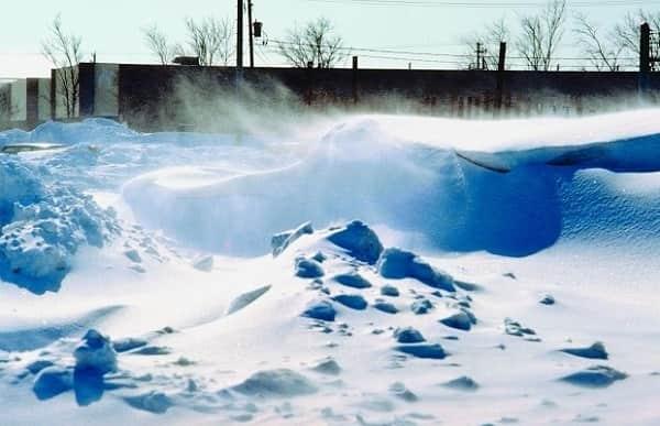 Емельян зимний Приметы  картинка