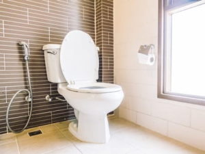 Сонник ходить в туалет по большому