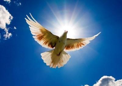 День Святого Духа (Духов день)