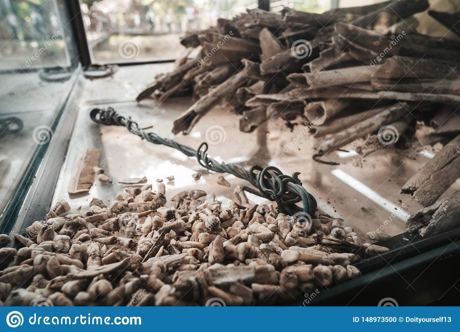 Поля смерти - Камбоджа