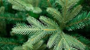 Литые искусственные елки